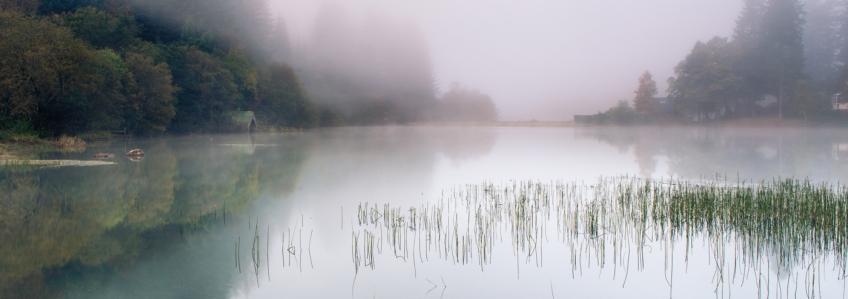 Milton Pond