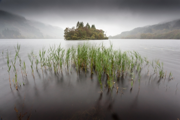 Loch Chon Rain and Reeds